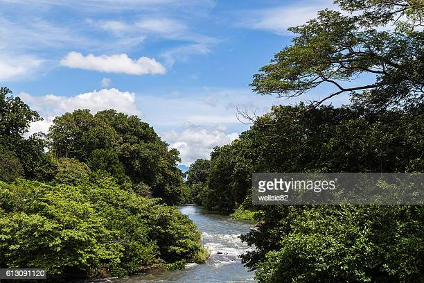 rio corobici - guanacaste stock pictures, royalty-free photos & images