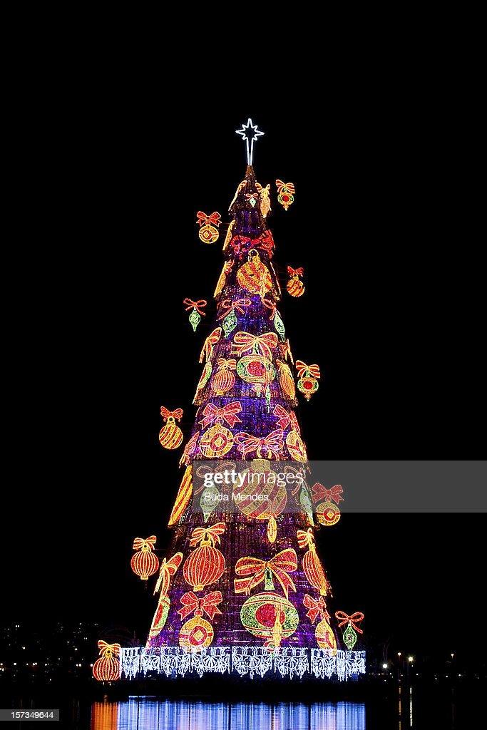 Inauguration of the Christmas Tree in Rio de Janeiro : ニュース写真