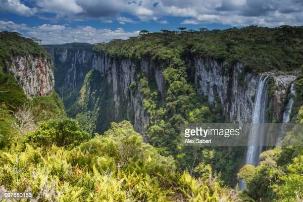 """rio grande do sul, brazil."" - alex saberi stock pictures, royalty-free photos & images"