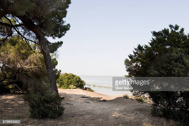 Rio Guadalquivir, Doñana National Park, Huelva