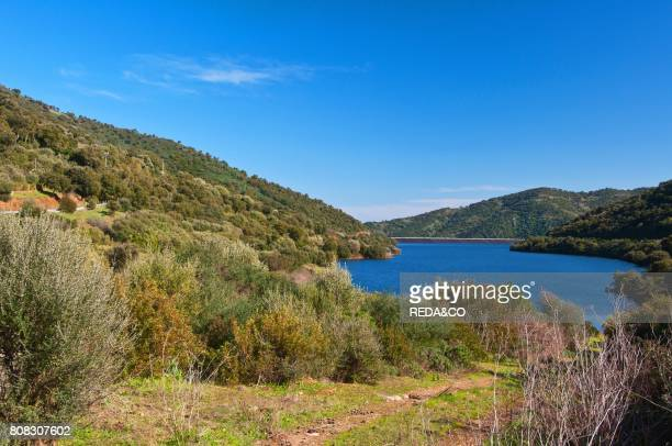 Rio Leni Dam. Villacidro. Medio Campidano Province. Sardinia. Italy. Europe.