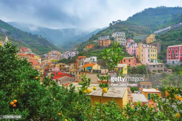 rio maggiore in cinque terre, liguria, italy - cinque terre stock pictures, royalty-free photos & images