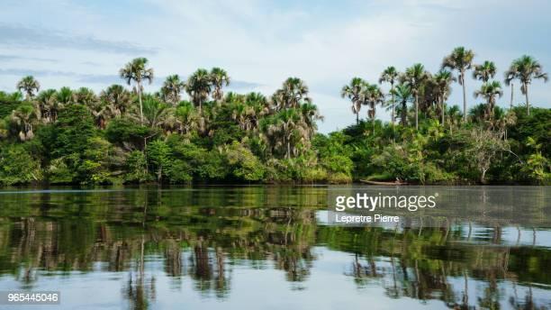 rio preguiças (the lazy river) - lençóis maranhenses - barreirinhas - barreirinhas stock pictures, royalty-free photos & images