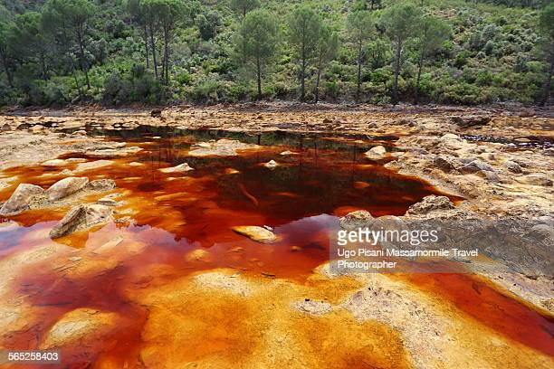 rio tinto river - red_tide stock pictures, royalty-free photos & images