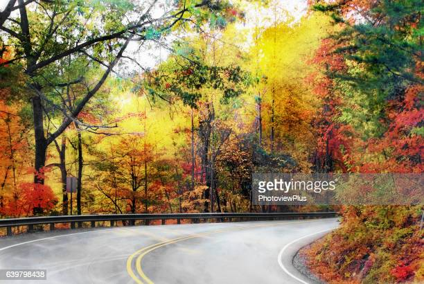Riot of Fall Colors along the Blue Ridge Parkway