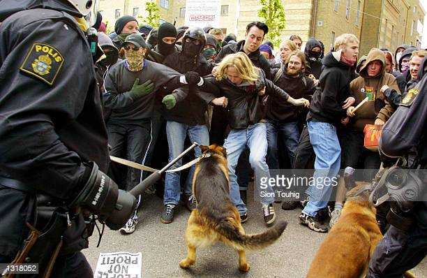 Riot police force back anticapitalist protesters with attack dogs as fighting breaks out during a demonstration against the EU Summit June 15 2001 in...