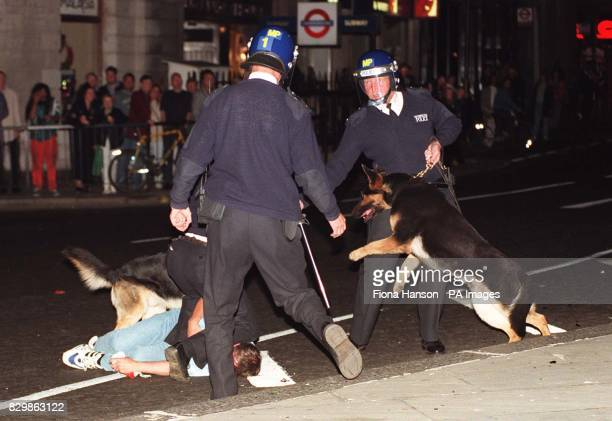 Riot police use dogs to control an England fan as they begin the task of dispersing the huge crowd of England supporters that had built up in...