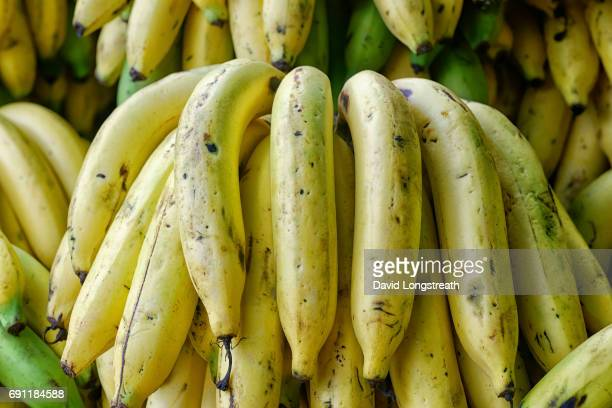 Ripe bananas are offered for sale at a morning market.