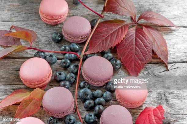 Ripe blueberry with pink macaroons and red beautiful autumn leaves. Copy space.