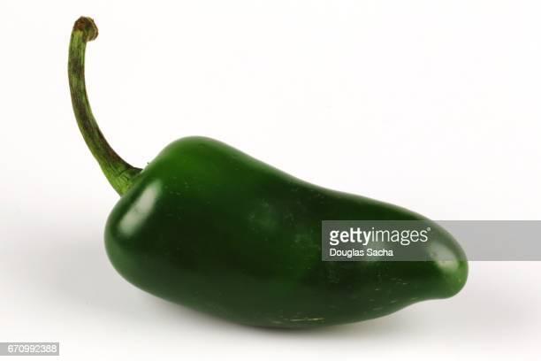 ripe green jalapeno pepper (capsicum annuum) - jalapeno stock-fotos und bilder