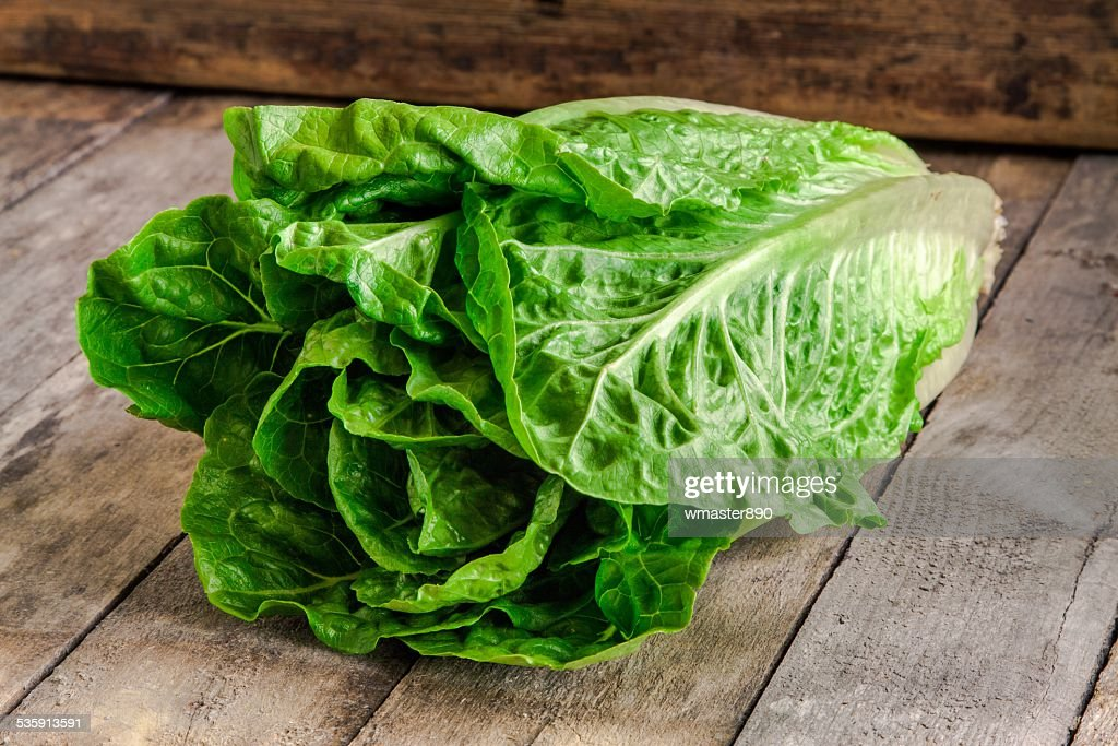 ripe organic green salad Romano : Stock Photo