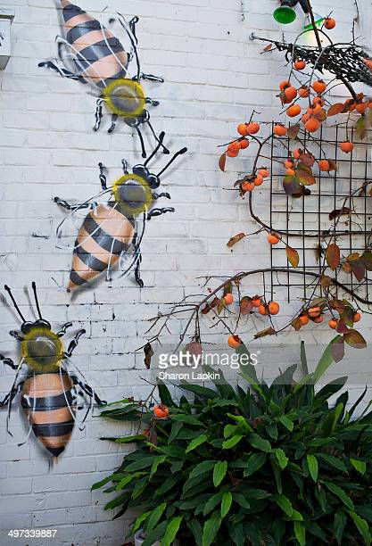 Ripe persimmons growing on the outside of an innercity restaurant and sharing the brick wall with handpainted honey bees