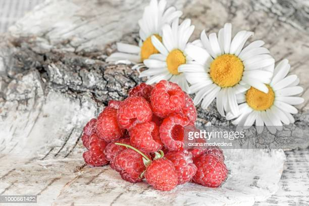 Ripe red raspberries lying on a birch bark on a background of chamomile flowers.