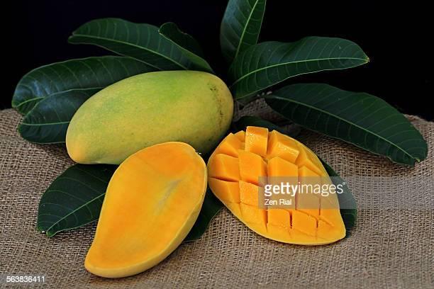 Ripe yellow mangoes on burlap fabric