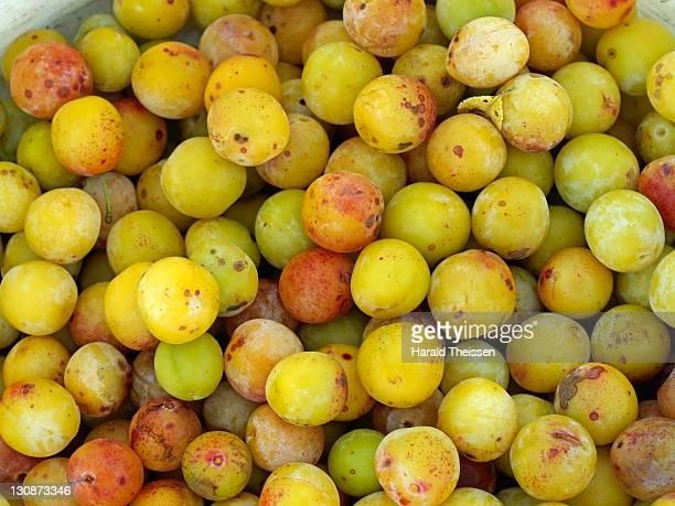 Ripe yellow plums, mirabelles
