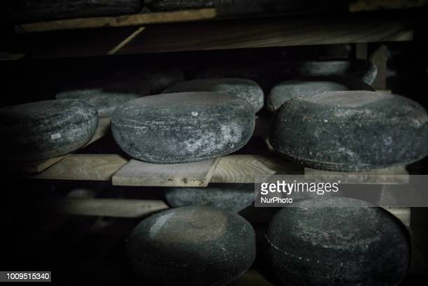 Ripening cheeses in a cellar in Dooobra ferma farm Dooobra ferma is a dairy farm in Kiev region specialized on handcrafted cheeses Bohuslav Kiev...
