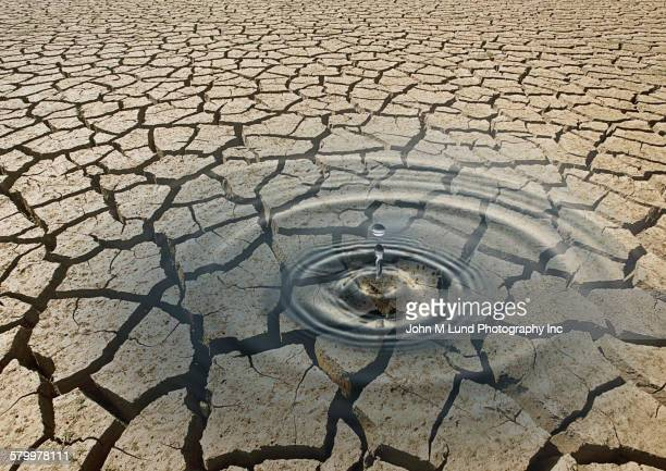Ripple of water in cracked desert earth