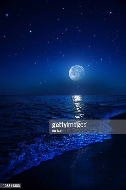 Rising moon over sea