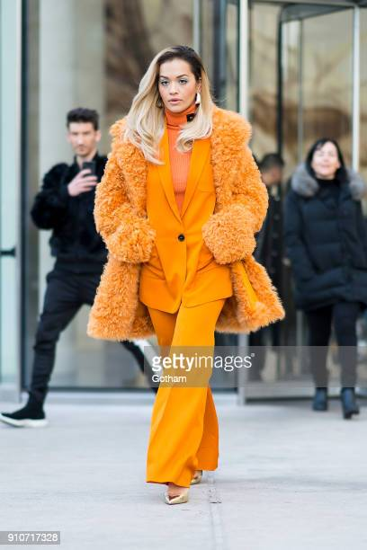 Rita Ora is seen in Battery Park City on January 26 2018 in New York City