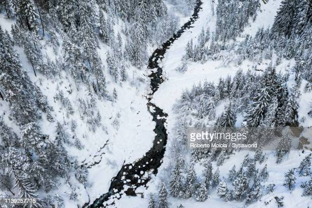 river along snowy woods, davos, switzerland - davos stock pictures, royalty-free photos & images