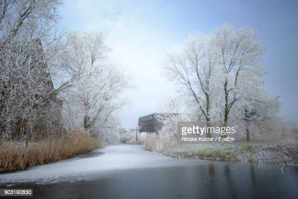 River Amidst Bare Trees Against Sky During Winter