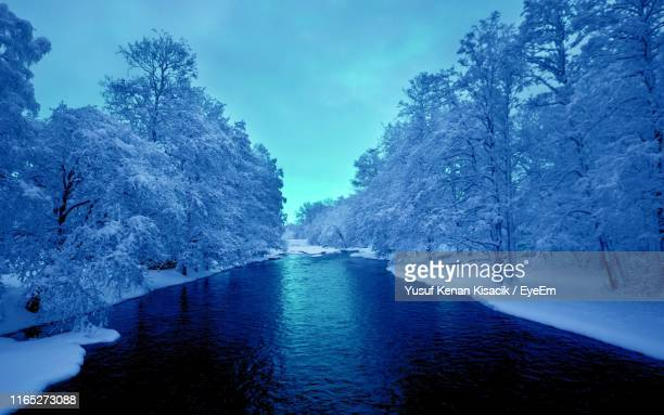 river amidst snow covered trees against blue sky - sivas stock pictures, royalty-free photos & images