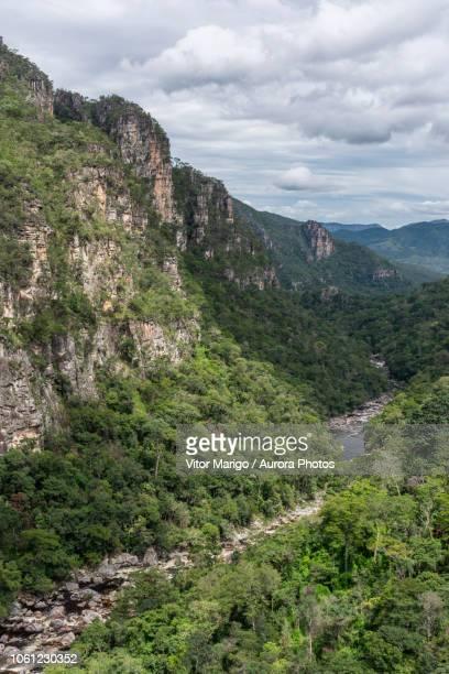 river and cerrado vegetation seen from mirante da janela peak in chapada dos veadeiros, goias, brazil - cerrado stock pictures, royalty-free photos & images