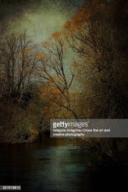 river and trees - gregoria gregoriou crowe fine art and creative photography stock photos and pictures