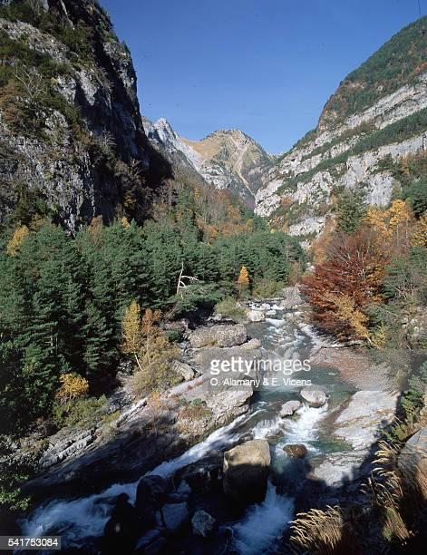 river ara flowing through gorge, spain - alamany fotografías e imágenes de stock