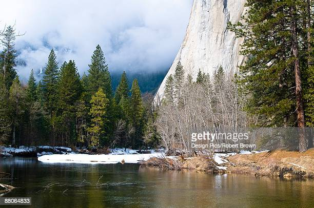 River at foot of mountain, El Capitan, Yosemite National Park, California, USA