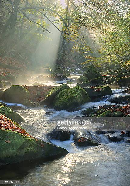 river at mist, west yorkshire - simon higginbottom stock pictures, royalty-free photos & images