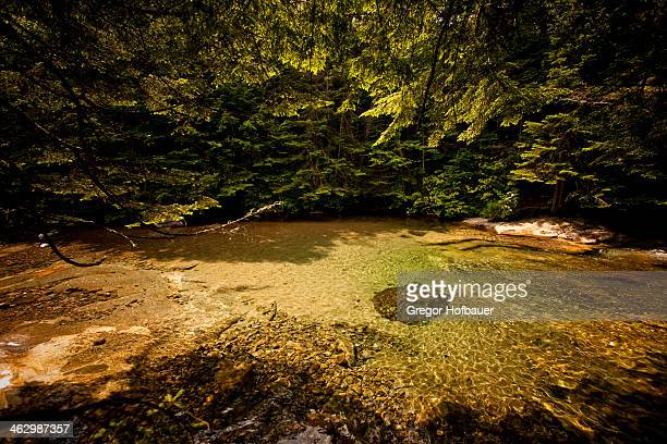 river at white mountain national forest - white river national forest stock photos and pictures