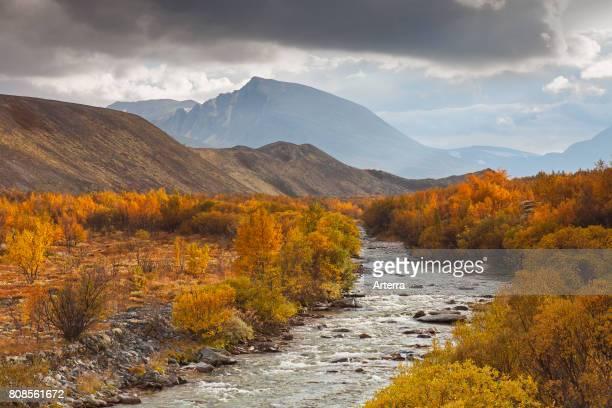 River Atna at D¿rŒlseter / Doralseter in the Rondane National Park in autumn Dovre Norway Scandinavia