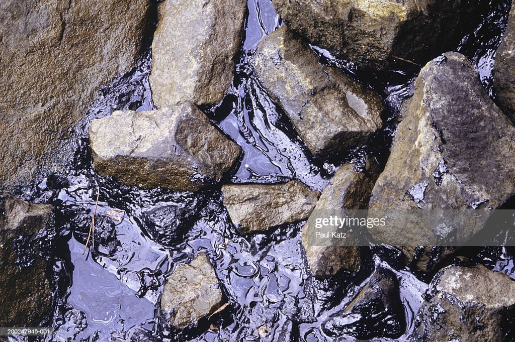 River bank with oil spill in water : Stock Photo