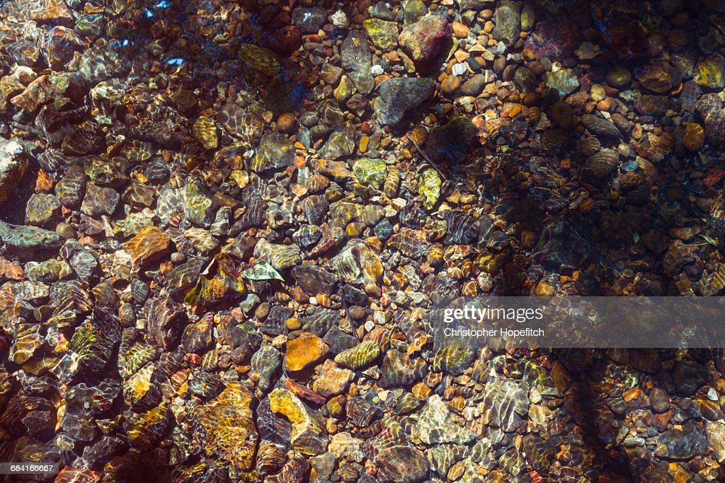 RIver Bed : Stock Photo