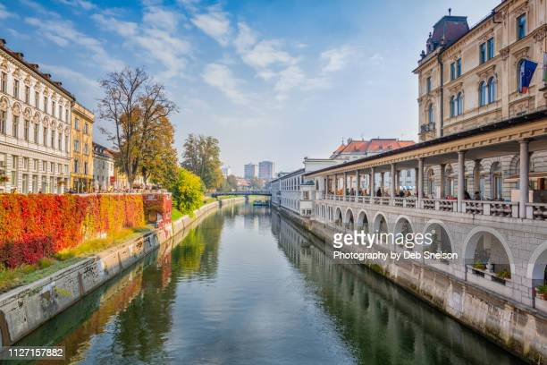 river canal in historic old town ljubljana - ljubljana stock pictures, royalty-free photos & images