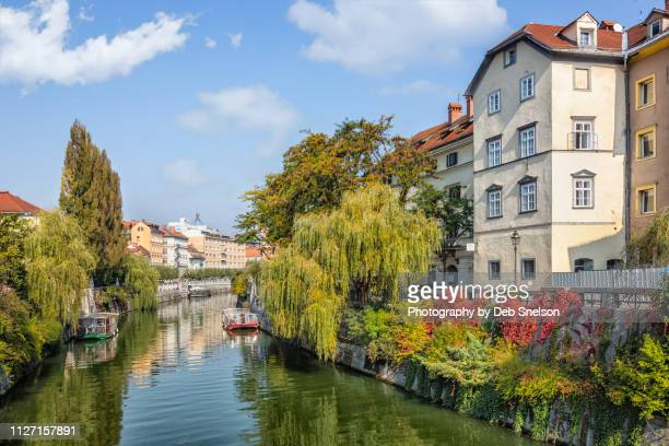 river canal ljubljana capital of slovenia - ljubljana stock pictures, royalty-free photos & images