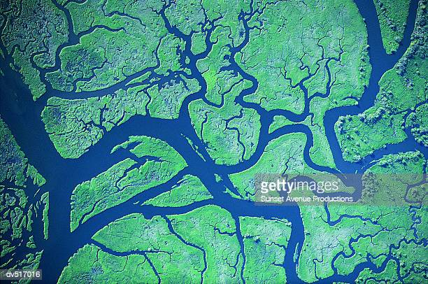 river delta patterns, columbia river, western washington and western oregon, usa - rivier stockfoto's en -beelden