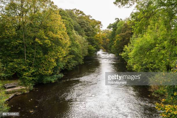 river derwent in derbyshire - chatsworth derbyshire stock pictures, royalty-free photos & images