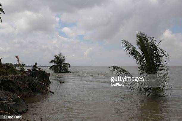 River erosion seen in the bank of Padma river in Shariatpur, near Dhaka, Bangladesh on August 30, 2018. More than 4000 people lost their houses...