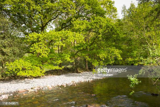River Esk at Eskdale in the Lake District, Cumbria, England.