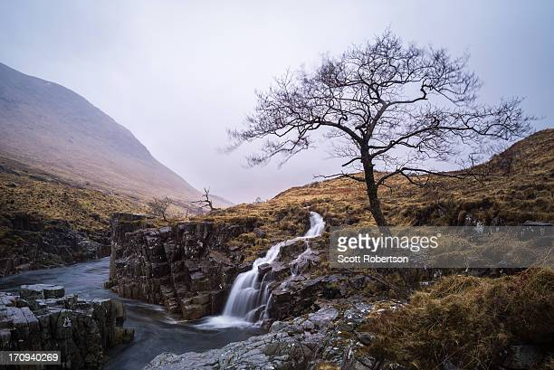 River Etive, water flows and lone bare tree