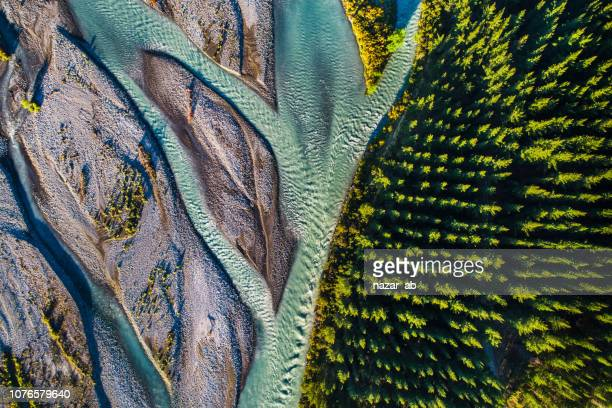 river flowing next to pine forest. - aerial view stock pictures, royalty-free photos & images