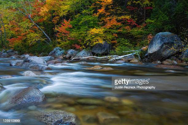 river flowing - swift river stock photos and pictures