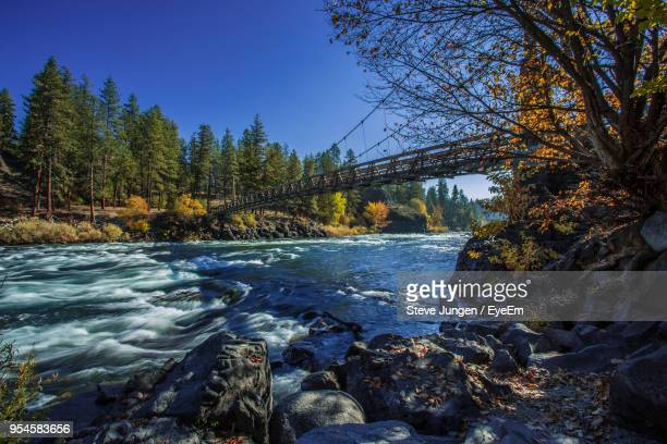 river flowing through forest - washington state stock pictures, royalty-free photos & images