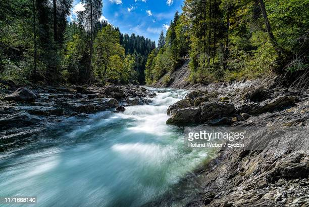 river flowing through rocks in forest - bach stock-fotos und bilder