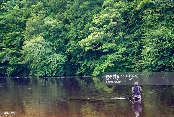 river fly fishing - fly casting stock pictures, royalty-free photos & images