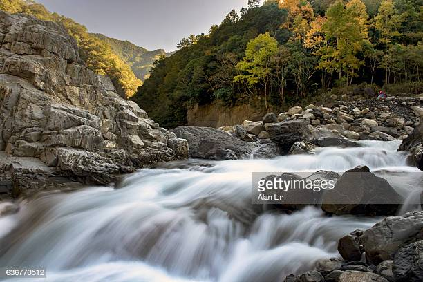 River in a mountain forest