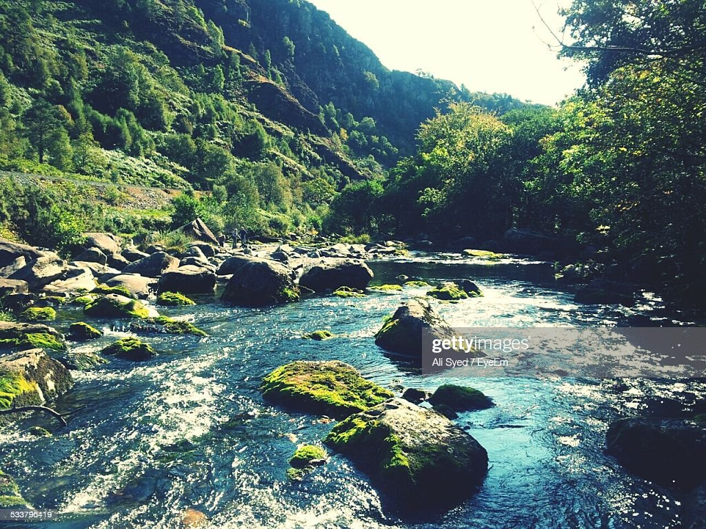 River In Canyon : Foto stock