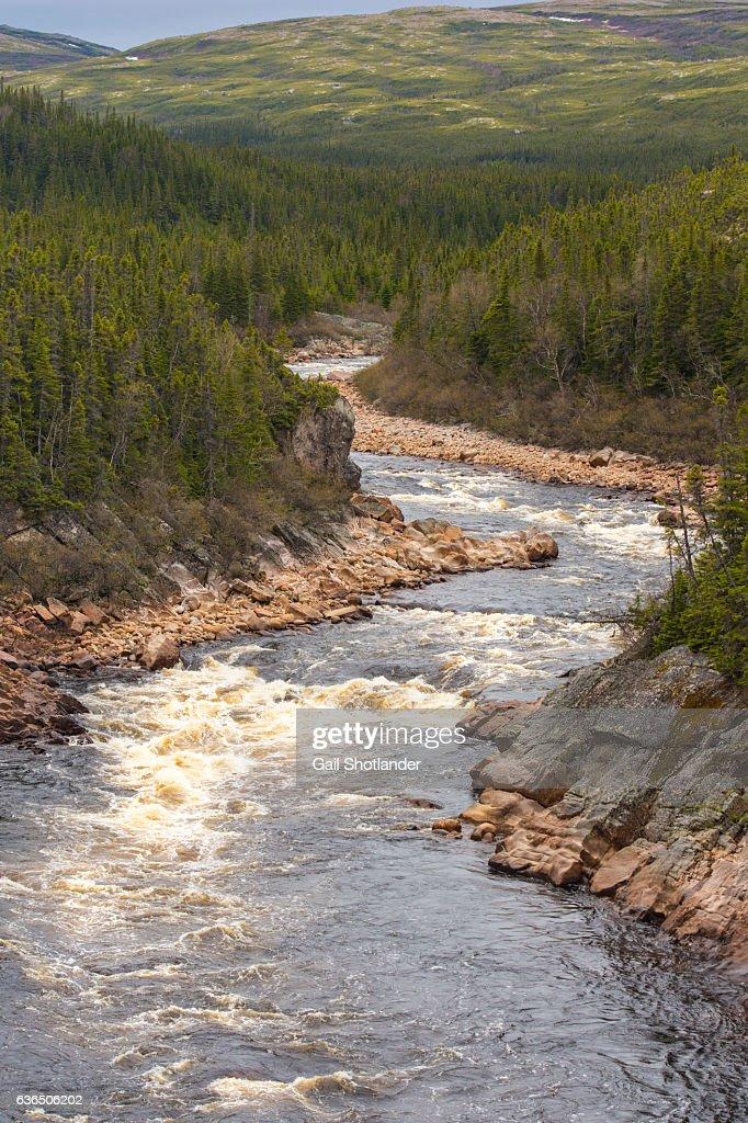 River in Gros Morne : Stock Photo